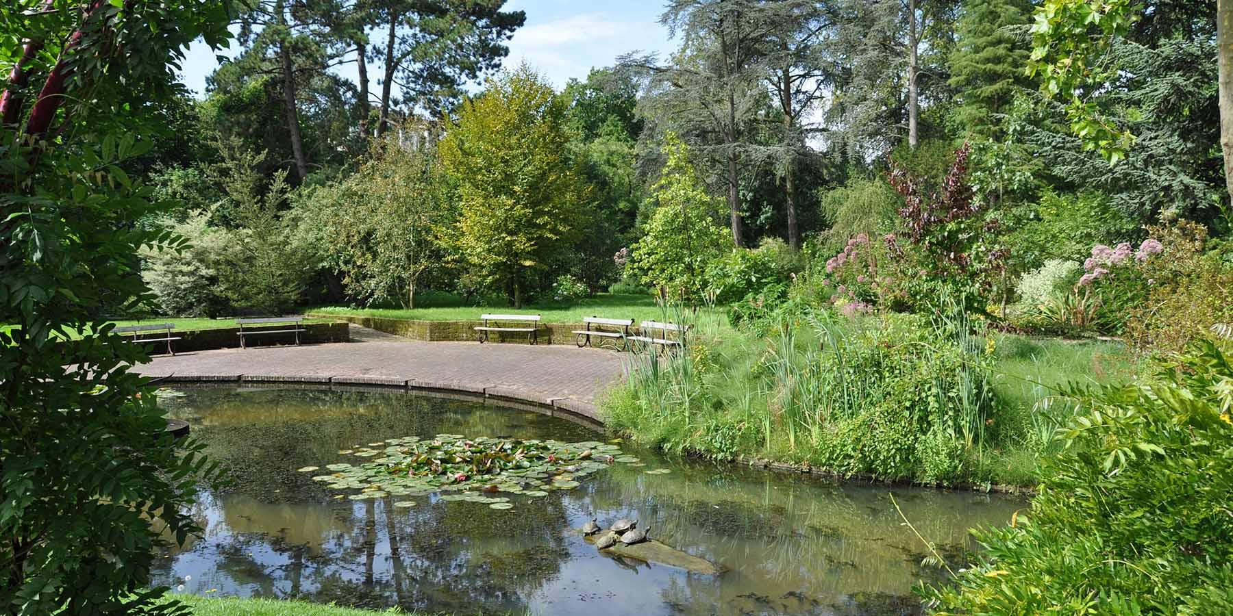 Trompenburg tuinen arboretum prachtige plantentuin in for De tuin kralingen